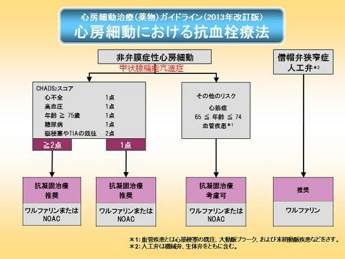 不整脈非薬物治療ガイドライン - j-circ.or.jp